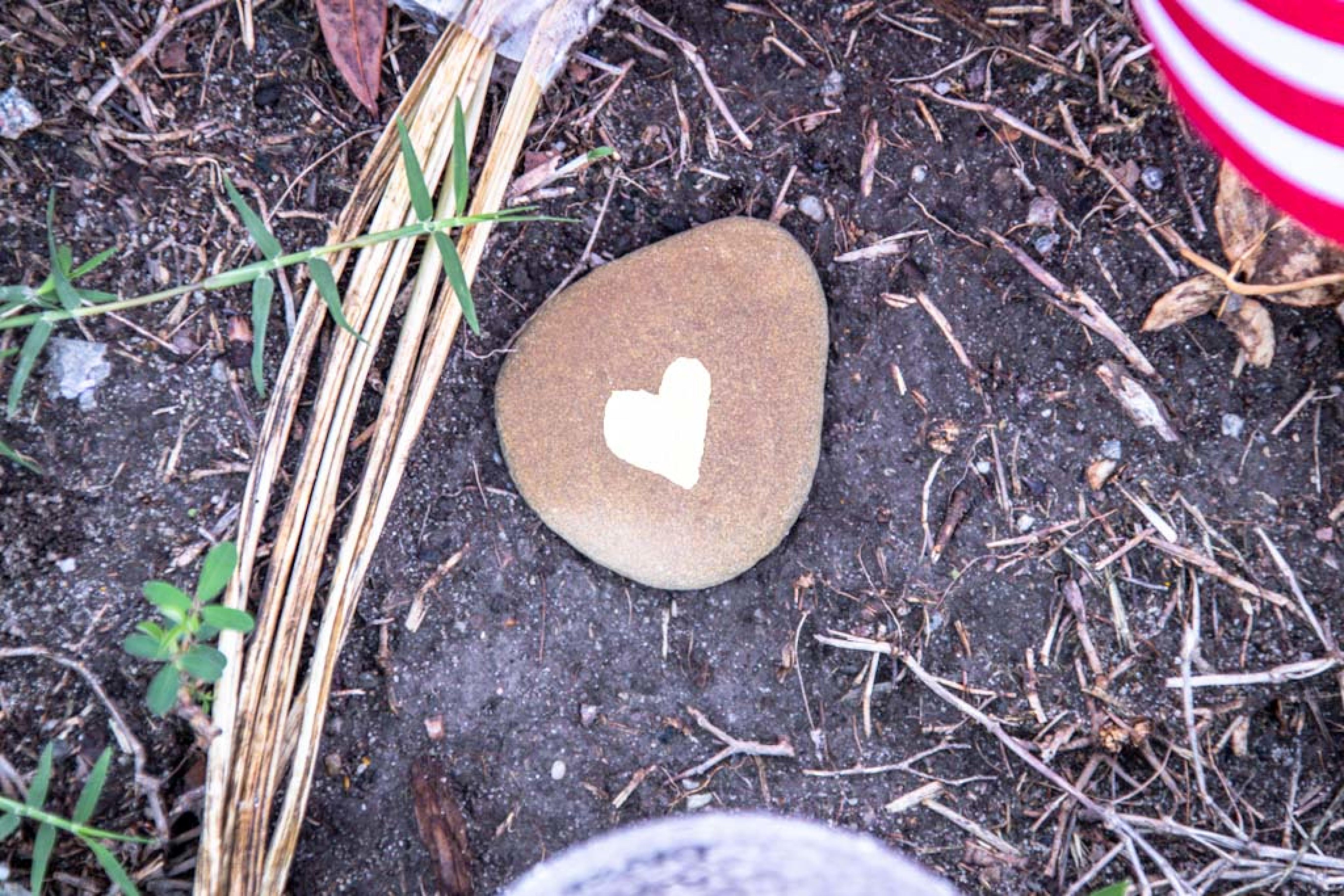 Heart in dirt